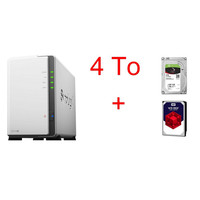 Synology DS218J + Seagate IronWolf, 2 To + Western Digital WD Red, 2 To
