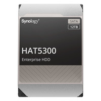 Synology HAT5300 12 To